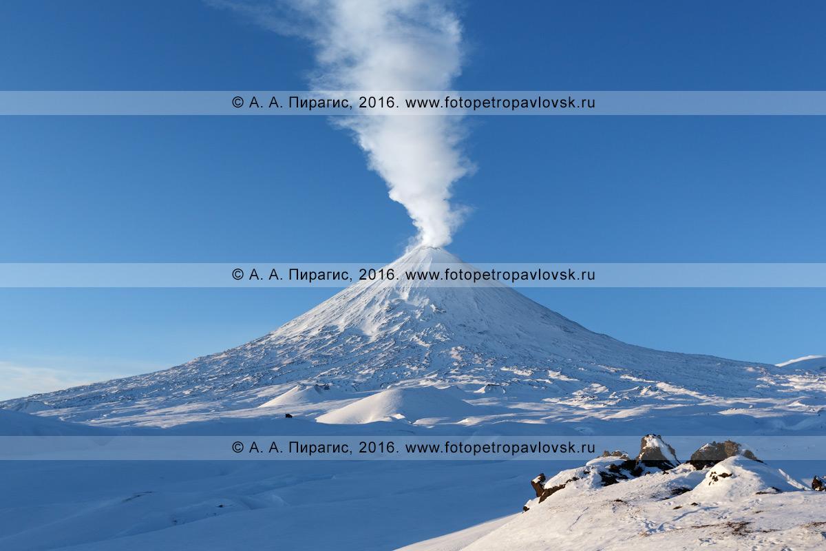 Фотография: зимний вид на действующий вулкан Ключевская сопка, с вырывающимся из кратера мощным столбом пара и газа. Камчатский край