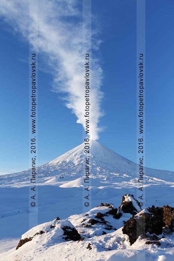 Фотография: живописный зимний вид на действующий Ключевской вулкан. Камчатский край, Ключевская группа вулканов