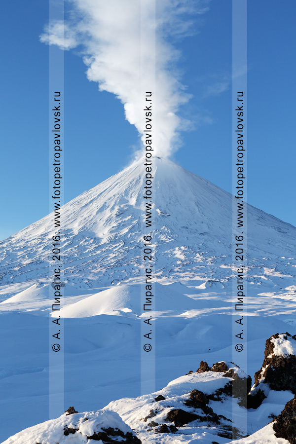 Фотография: активный вулкан Ключевская сопка, с вырывающимся из кратера исполина мощным парогазовым столбом. Камчатский край