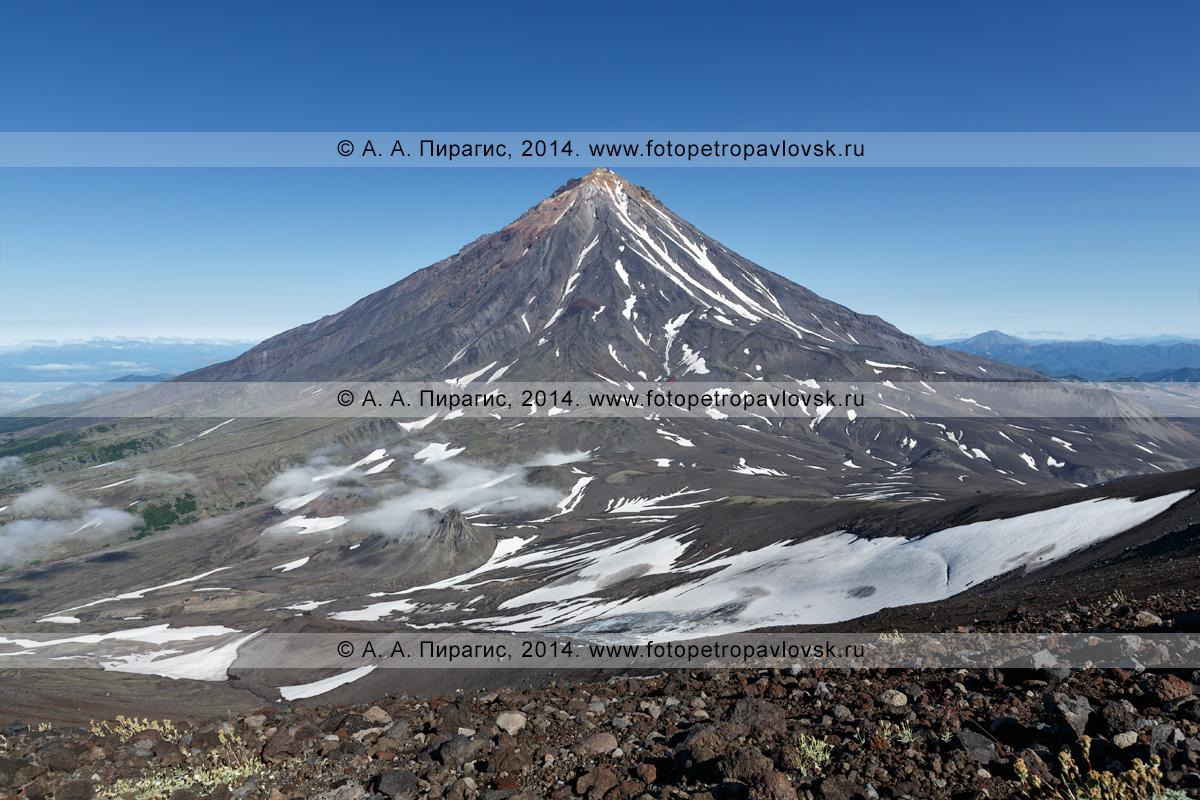 Вид на действующий вулкан Корякская сопка (Коряка) со склона вулкана Авачинская сопка (Авача). Полуостров Камчатка