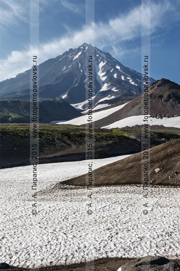 Фотография: красивый камчатский вулканический пейзаж — вечерний вид на Корякский вулкан (Koryaksky Volcano) — действующий камчатский вулкан. Полуостров Камчатка