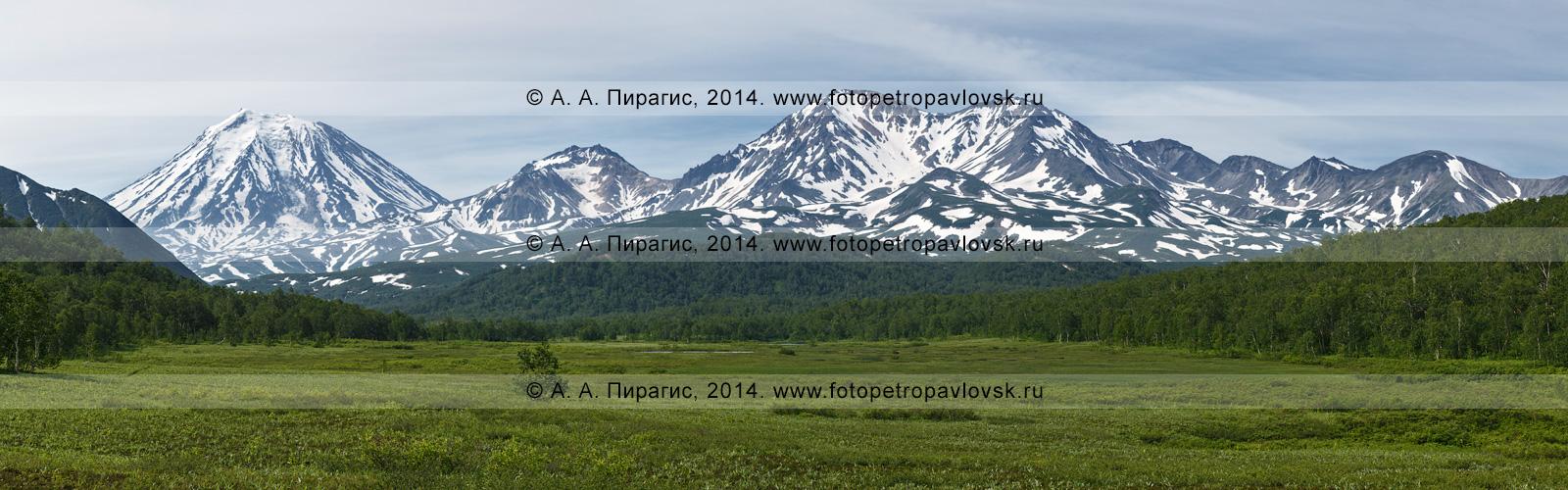Панорама: вулкан Корякский (Корякская сопка, Koryaksky Volcano), вулкан Арик (гора Арик, Arik Volcano) и вулкан Ааг (гора Ааг, Aag Volcano). Камчатка, Авачинско-Корякская группа вулканов