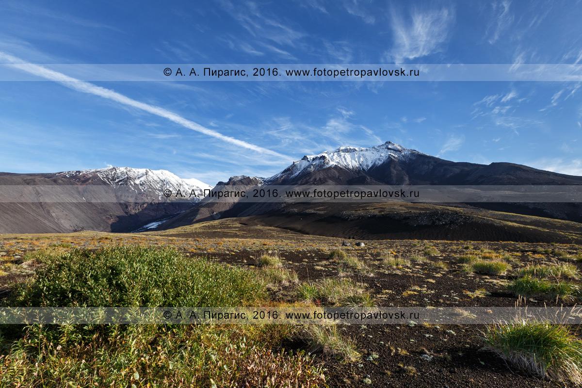 Фотография: вулканический ландшафт Камчатки, красивый осенний вид на Козельский вулкан в Авачинско-Корякской группе вулканов
