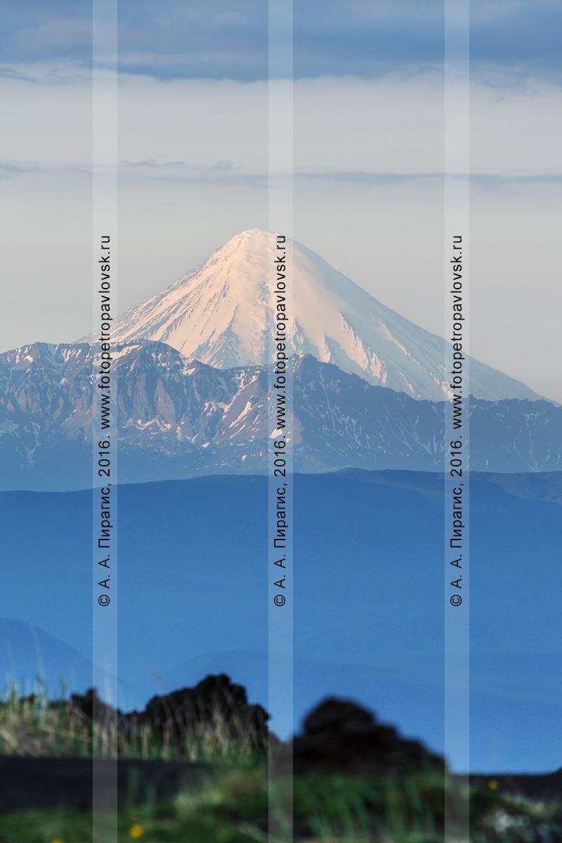 Фотография: вулканический пейзаж Камчатки — вид на действующий Кроноцкий вулкан