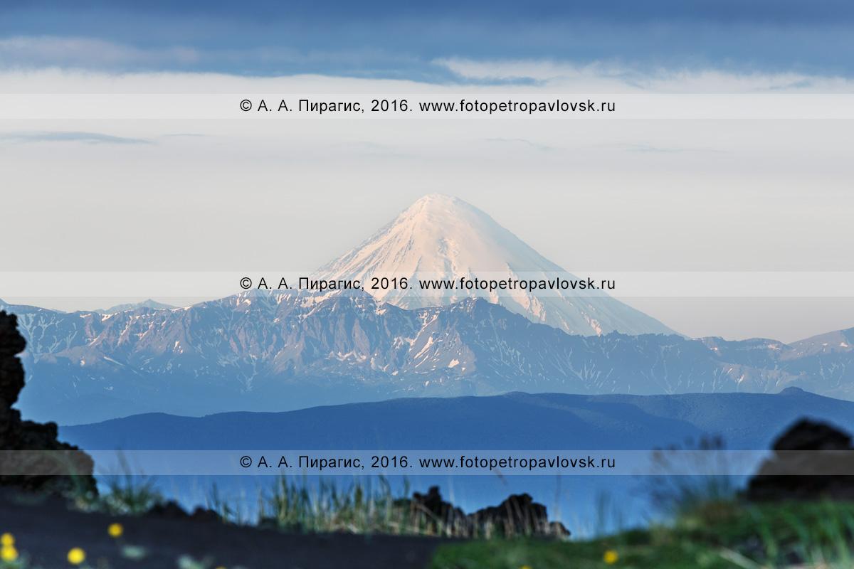 Фотография: вулканический пейзаж — камчатский действующий вулкан Кроноцкая сопка на восходе солнца