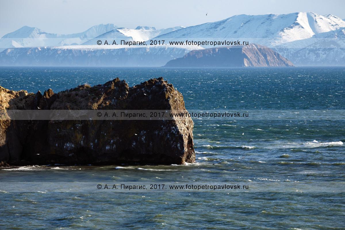 Фотография: камчатский морской пейзаж — мыс Маячный на входе в Авачинскую губу (Авачинская бухта)
