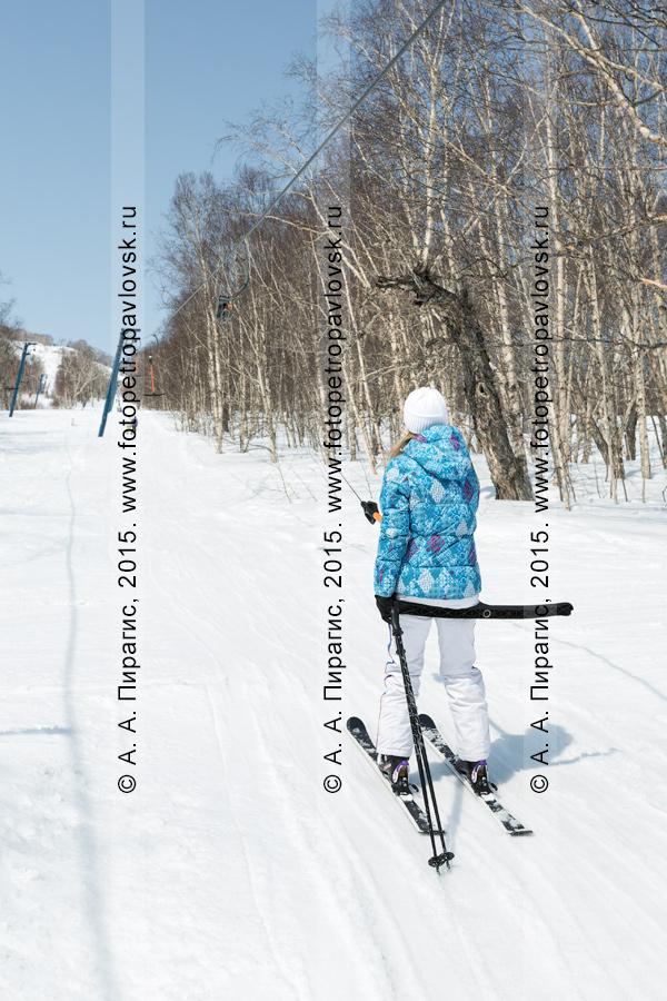 """Фотография: горнолыжница едет на бугельном подъемнике на гору Морозную. Камчатский край, город Елизово, горнолыжная база """"Морозная"""""""