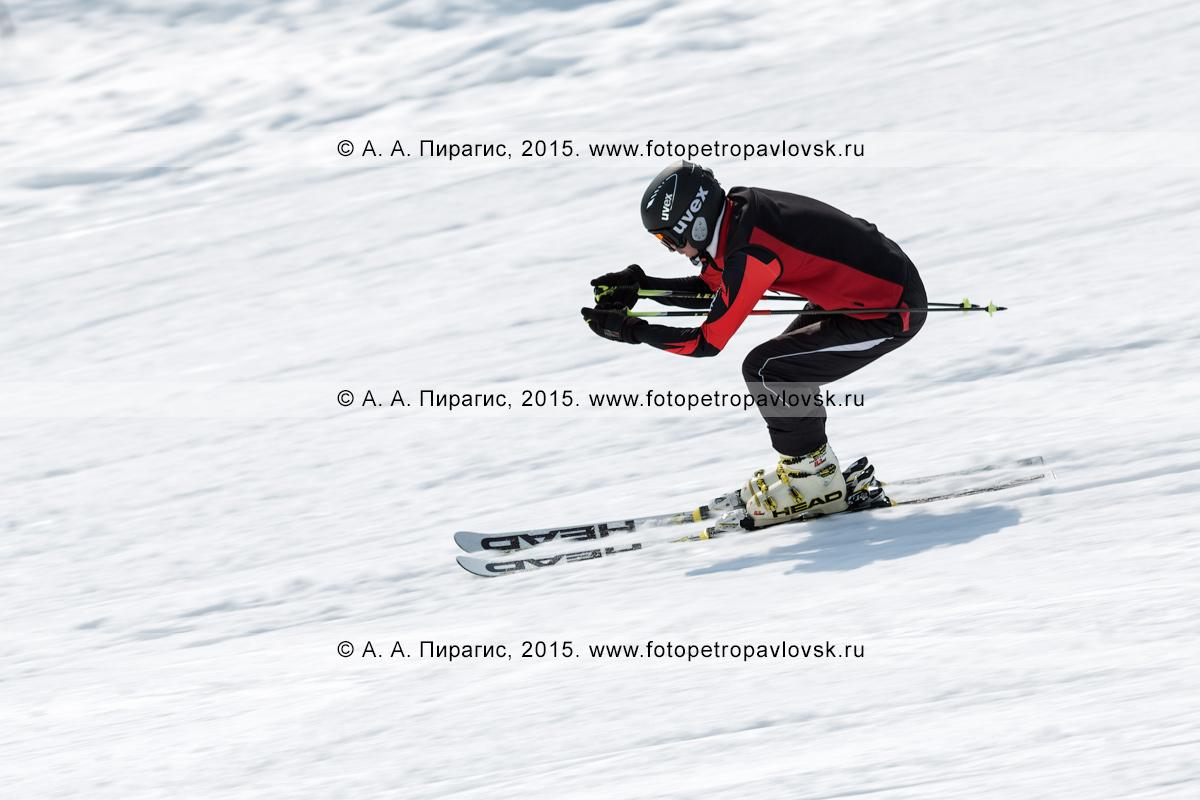 """Фотография: горнолыжная база """"Морозная"""", горнолыжник мчится на лыжах по склону горы Морозной. Камчатский край, Елизовский район, город Елизово"""