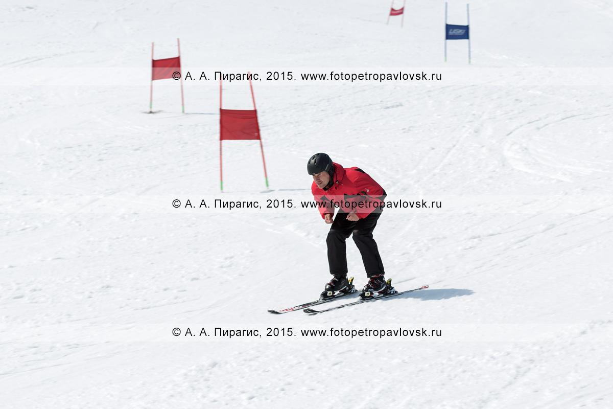 """Фотография: горнолыжник едет на лыжах без палок по склону горы Морозной. Горнолыжная база """"Морозная"""", Камчатский край, Елизовский район, город Елизово"""