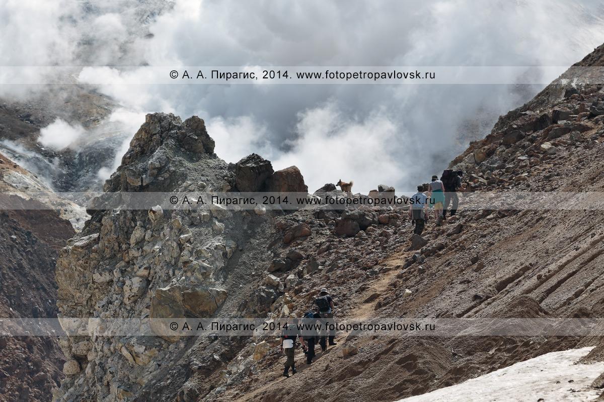 Фотография: камчатский пеший туризм — путешественники и туристы взбираются по тропинке в кратер активного Мутновского вулкана. Камчатский край, Мутновско-Гореловская группа вулканов