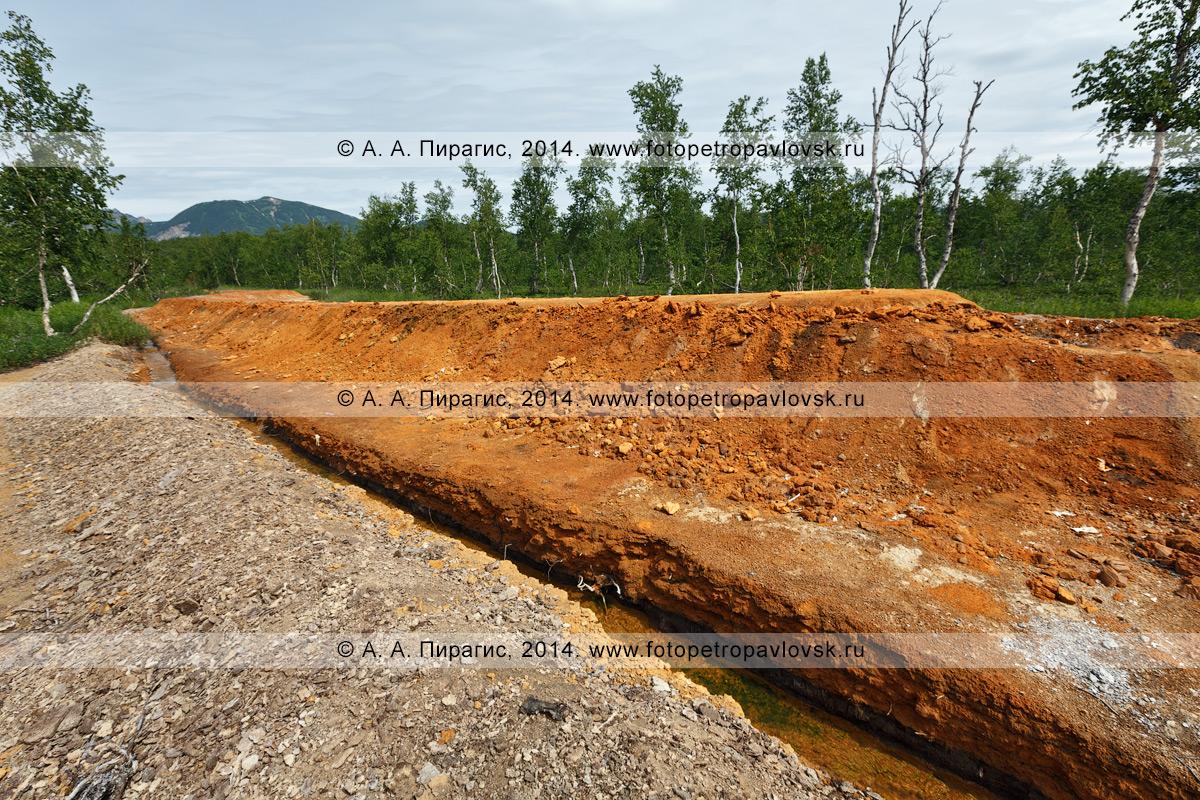 Горячий ручей, вытекающий из термального источника Грифон Иванова, с отложениями по бортам минерала — травертина. Налычево, Камчатский край