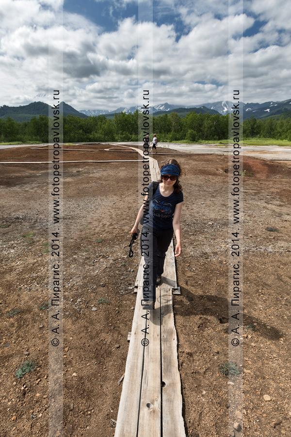 Туристка и путешественница идет по деревянным мосткам на термальной площадке Котел, или травертиновом щите Котел. Камчатка, Налычево