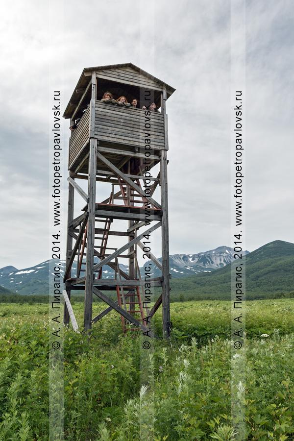 """Смотровая вышка (наблюдательная вышка) и туристы. Центральный кордон, природный парк """"Налычево"""", полуостров Камчатка"""