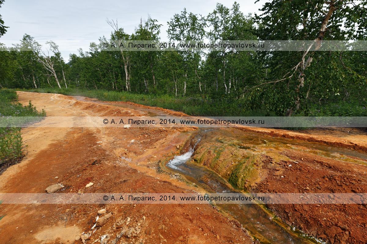 Ручей с термальной минеральной водой, травертиновый ручей, вытекающий из термальной декомпрессионной воронки Грифон Иванова