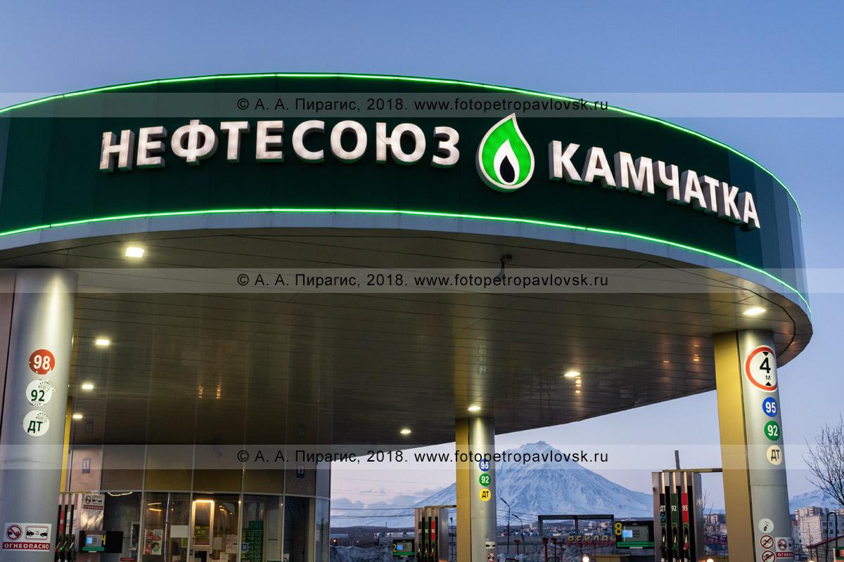 """Фотография: ночная подсветка названия автозаправочной станции, надпись: """"Нефтесоюз Камчатка"""""""