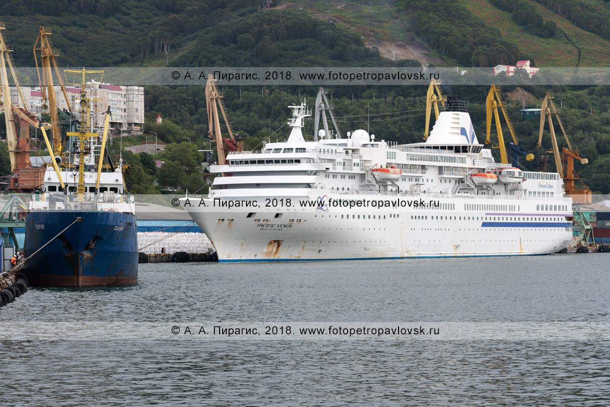 Фотография: японский круизный лайнер Pacific Venus стоит у причала в порту города Петропавловска-Камчатского