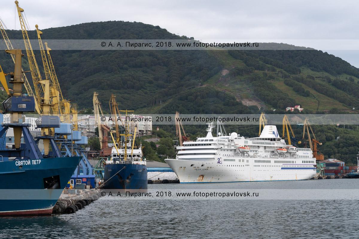 Фотография: белое японское круизное судно Pacific Venus на стоянке в порту города Петропавловска-Камчатского