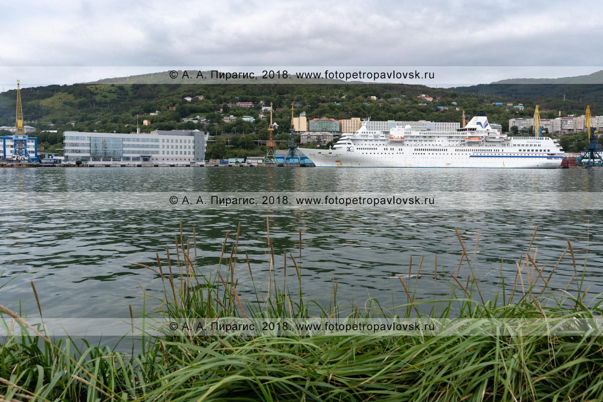 Фотография: белый японский круизный лайнер Pacific Venus с туристами и путешественниками на борту на стоянке у таможенного причала в Петропавловск-Камчатском морском торговом порту