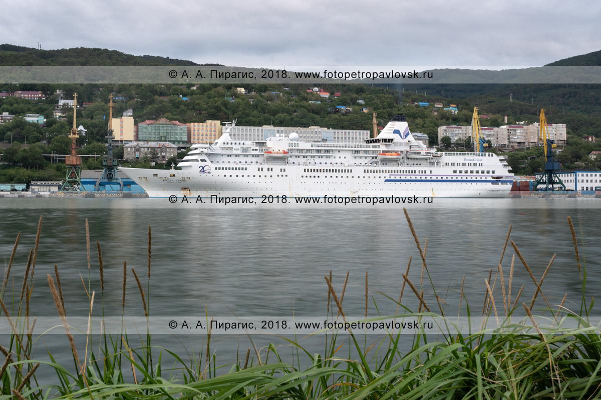 Фотография: японское круизное судно Pacific Venus в морском порту города Петропавловска-Камчатского