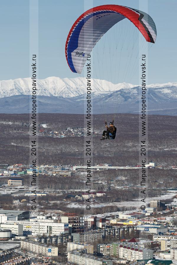 Фотография: камчатский парапланерист осуществляет полет на параплане над Петропавловском-Камчатским