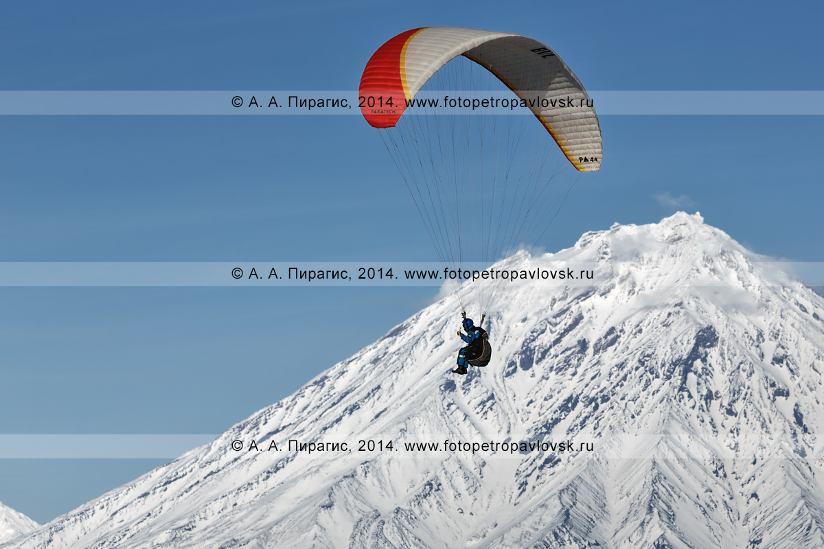 Фотография: спортсмен-парапланерист летит на параплане на фоне действующего Корякского вулкана на Камчатке