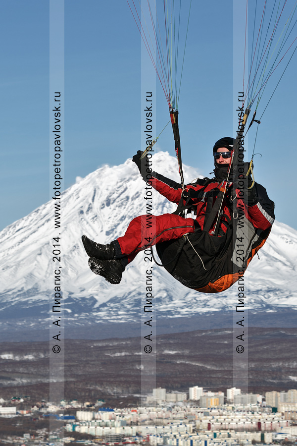 Фотография: камчатский парапланерист летит на параплане на фоне Корякского вулкана и города Петропавловска-Камчатского. Камчатский край
