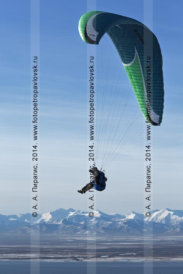 Фотография: полет на параплане над Авачинской губой (Авачинской бухтой) на фоне камчатских гор