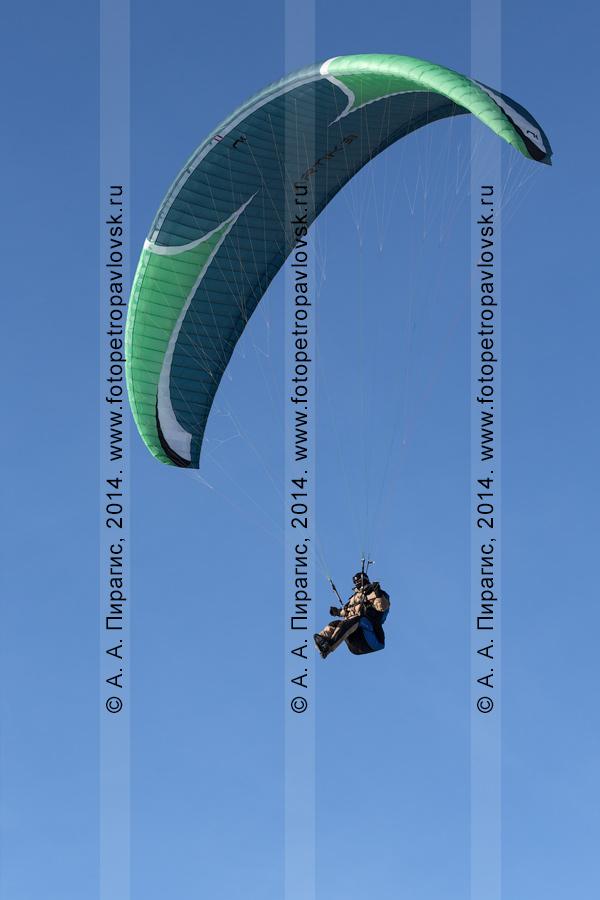 Фотография: полет на параплане на фоне голубого, безоблачного неба. Камчатка