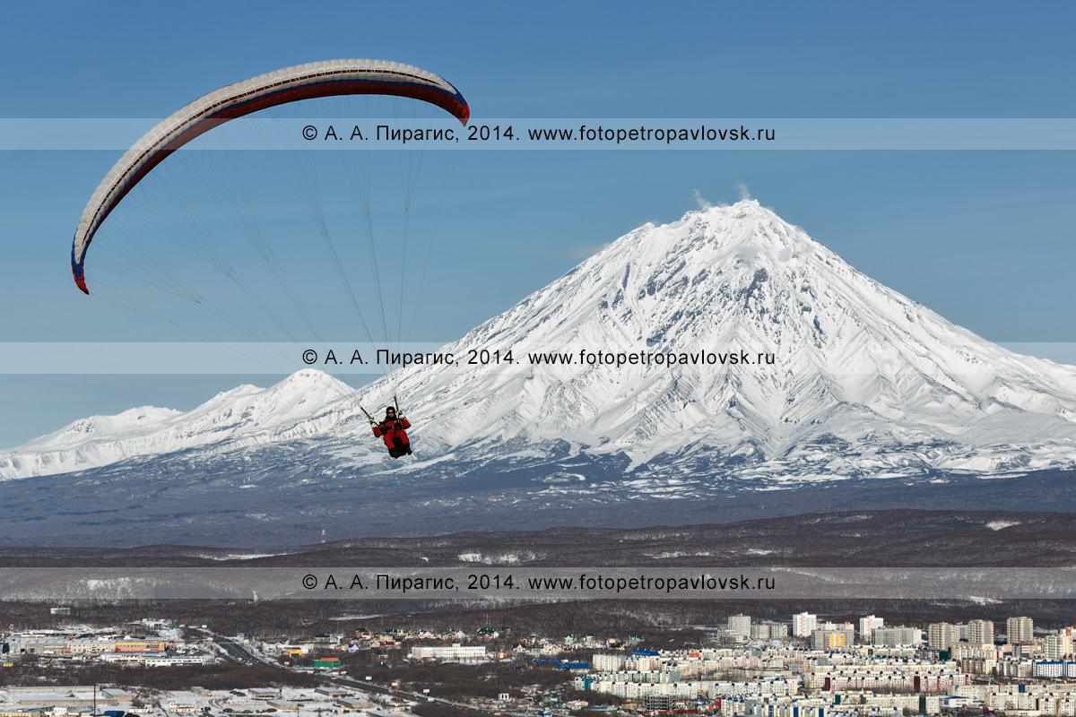 Фотография: полет параплана над Петропавловском-Камчатским на фоне Корякского вулкана — действующего вулкана Камчатки