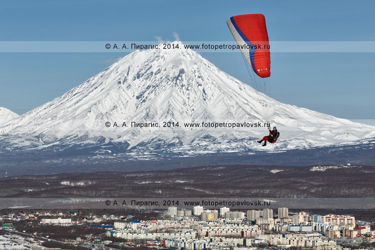 Фотография: полет на параплане на фоне вулкана Корякская сопка и города Петропавловска-Камчатского. Камчатский край