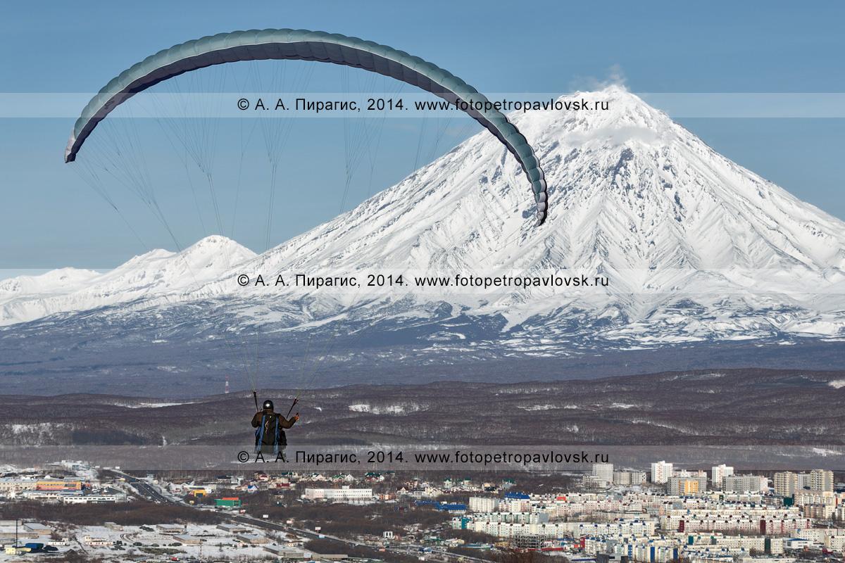 Фотография: полет параплана над столицей Камчатского края — городом Петропавловском-Камчатским на фоне Корякского вулкана