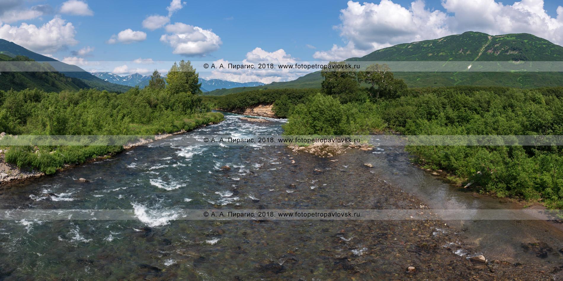 Панорамная фотография: живописный летний панорамный вид на горную реку Паратунку в Камчатском крае