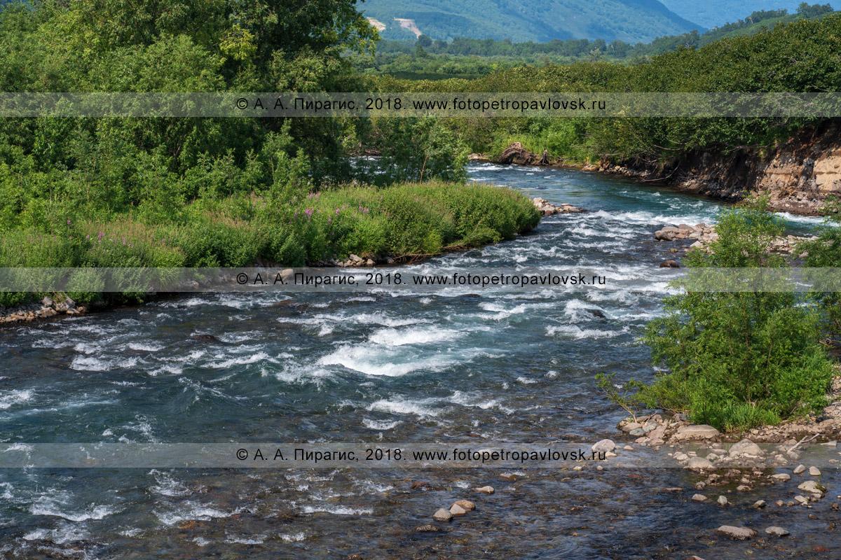 Фотография: горная река Паратунка на полуострове Камчатка, живописный летний пейзаж в солнечную погоду