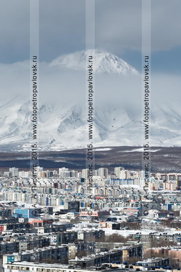 Зимний городской пейзаж Петропавловска-Камчатского с видом на действующий вулкан Камчатки — вулкан Корякская сопка (Корякский вулкан)