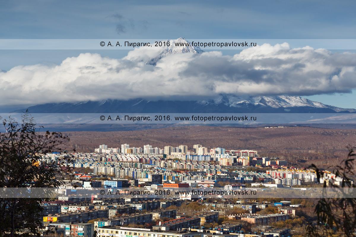 Фотография: город Петропавловск-Камчатский на фоне действующего стратовулкана Корякская сопка. Полуостров Камчатка