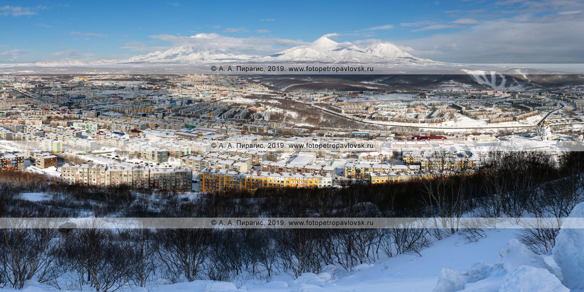 Панорамная фотография: зимний город Петропавловск-Камчатский на фоне «домашних» вулканов: Корякский вулкан, Авачинский вулкан, Козельский вулкан