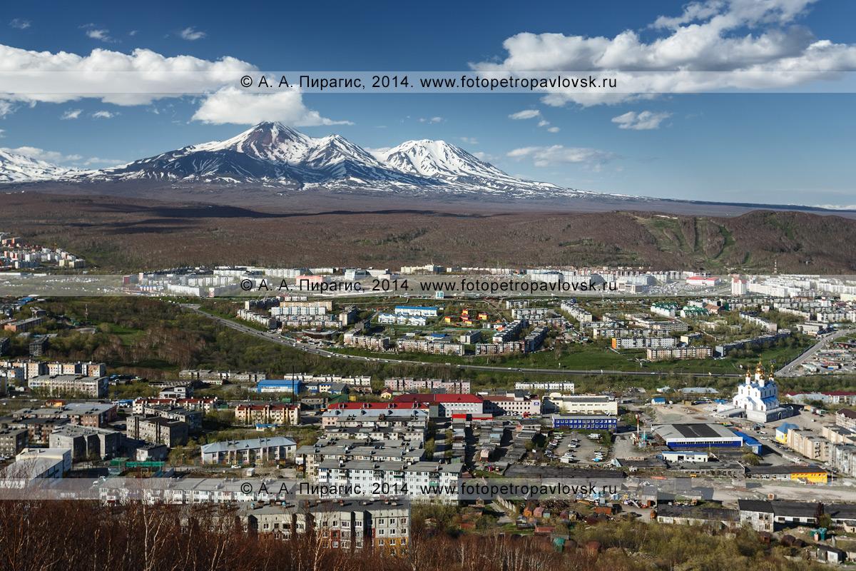 Фотография: вид на город Петропавловск-Камчатский и вулканы Авачинский и Козельский