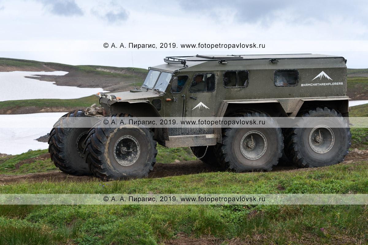Фотография: по грунтовой дороге на полуострове Камчатка едет транспортное средство «Хищник» — вездеход повышенной проходимости