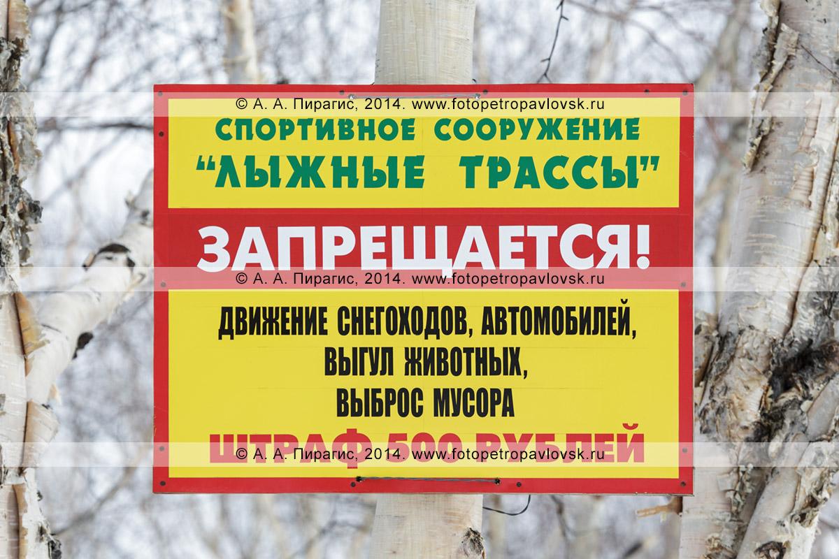 """Предупреждающая табличка: """"Спортивное сооружение «Лыжные трассы». Запрещается! Движение снегоходов, автомобилей, выгул животных, выброс мусора. Штраф 500 рублей"""""""