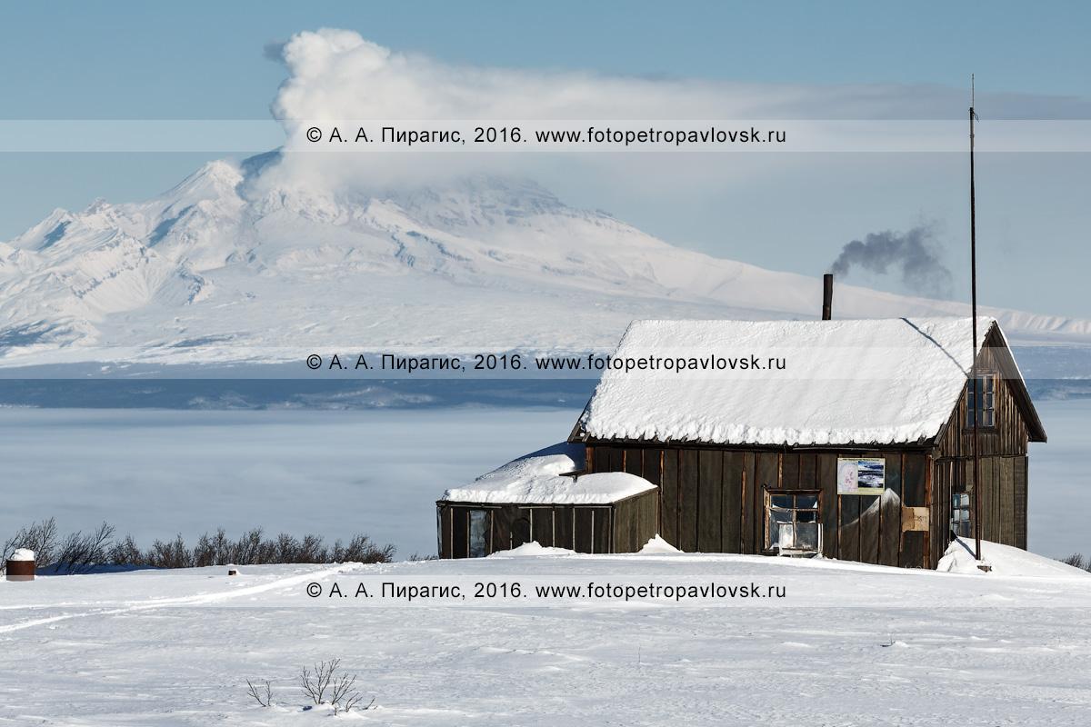 Фотографии домика вулканологов на фоне действующего вулкана Шивелуч. Полуостров Камчатка, Центральная Камчатская депрессия