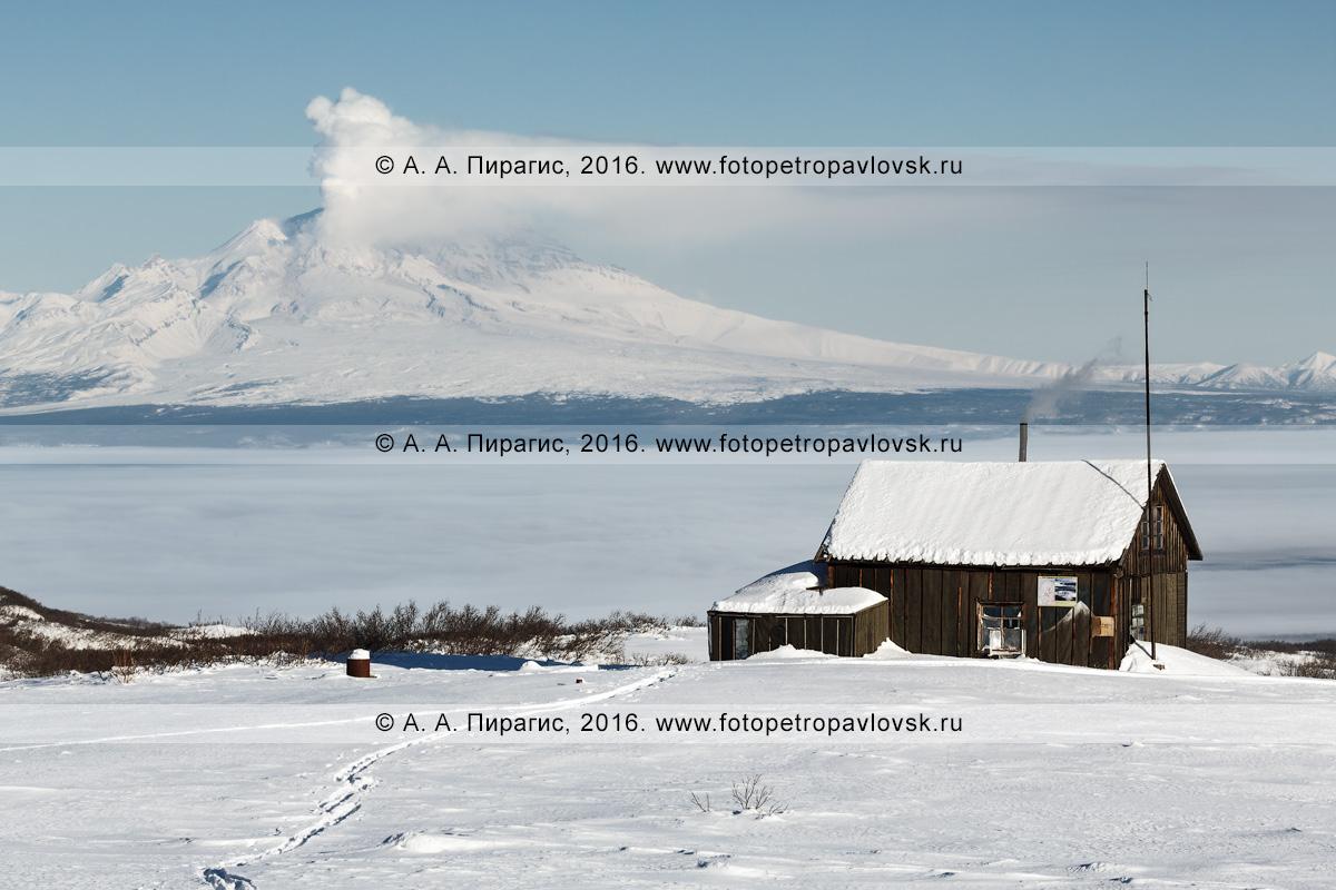Фотография: дом вулканологов на фоне действующего вулкана Шивелуч, извергающего из кратера пар и газ. Полуостров Камчатка, Центральная Камчатская депрессия