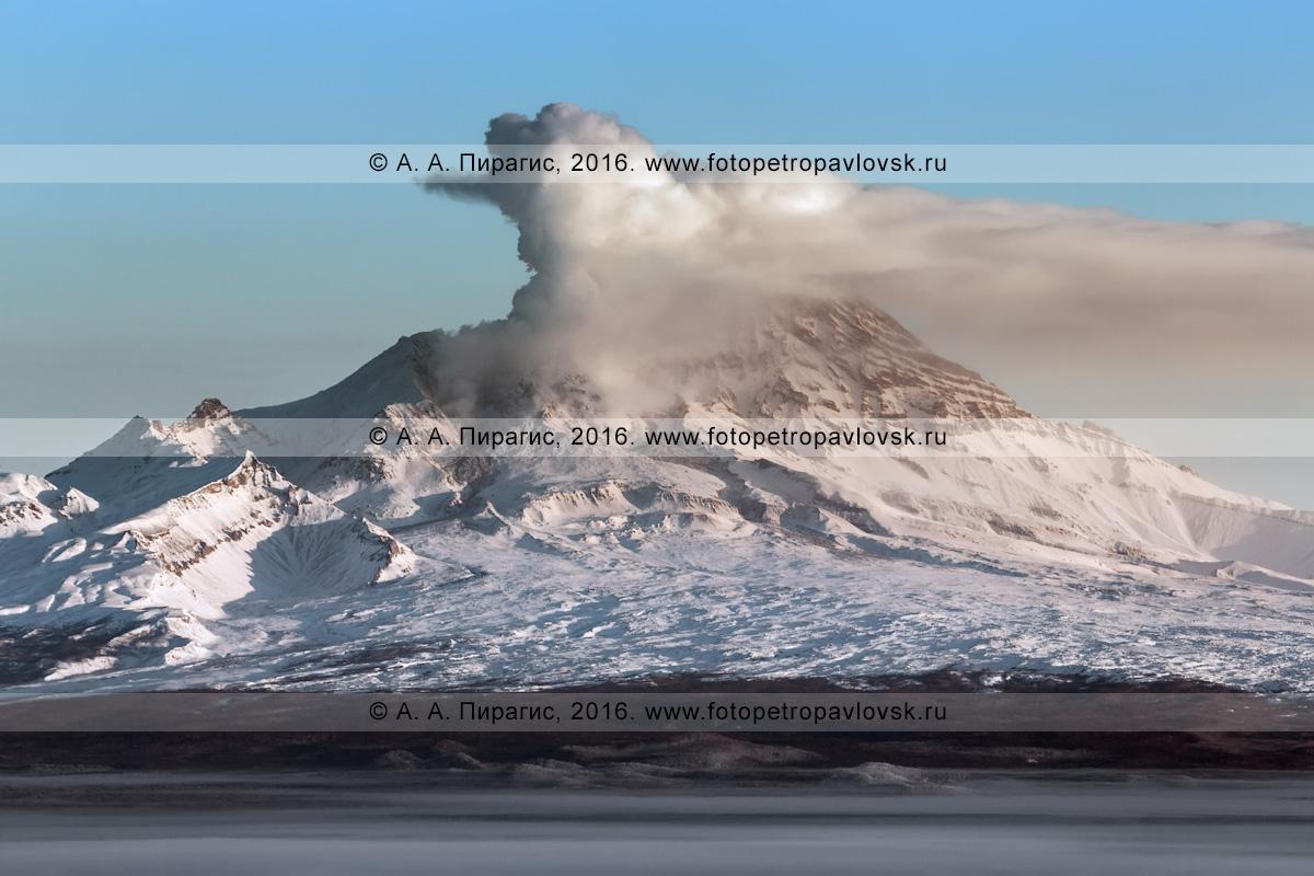 Фотографии действующего вулкана Шивелуч (Shiveluch Volcano) на полуострове Камчатка. Усть-Камчатский район, Камчатский край