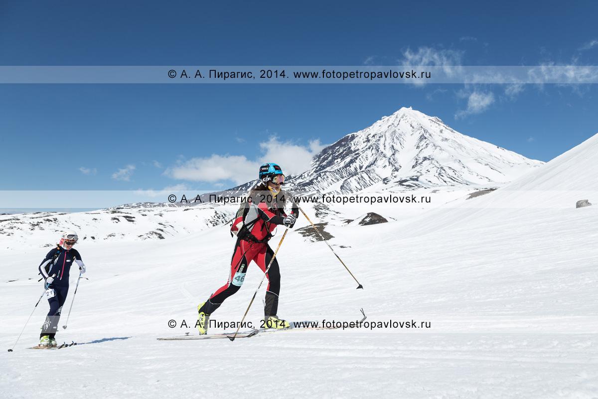 Фотография: девушки ски-альпинистки поднимаются на лыжах с пристегнутым камусом на Авачинский вулкан на фоне Корякского вулкана. Камчатка