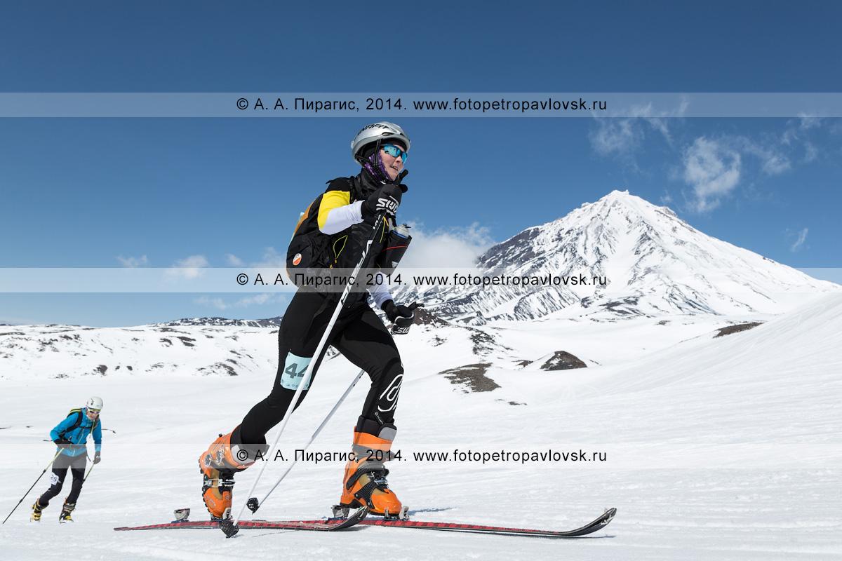 Фотография: девушка ски-альпинистка поднимается на лыжах с пристегнутым камусом на вулкан Авачинская сопка на фоне вулкана Корякская сопка. Соревнования по ски-альпинизму — индивидуальная гонка. Камчатка