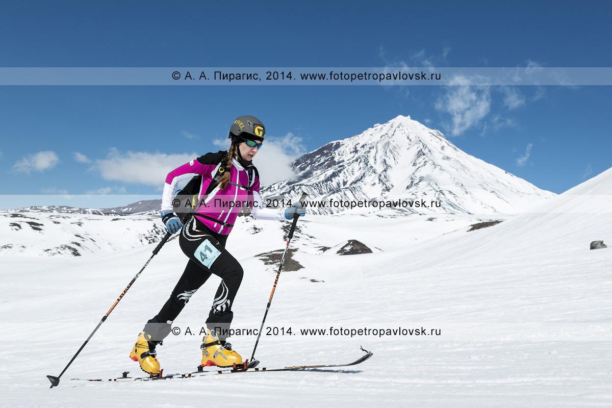 Фотография: камчатская ски-альпинистка Татьяна Сорвинкова поднимается на лыжах с пристегнутым камусом на вулкан Авачинская сопка на фоне вулкана Корякская сопка. Соревнования по ски-альпинизму — индивидуальная гонка. Полуостров Камчатка