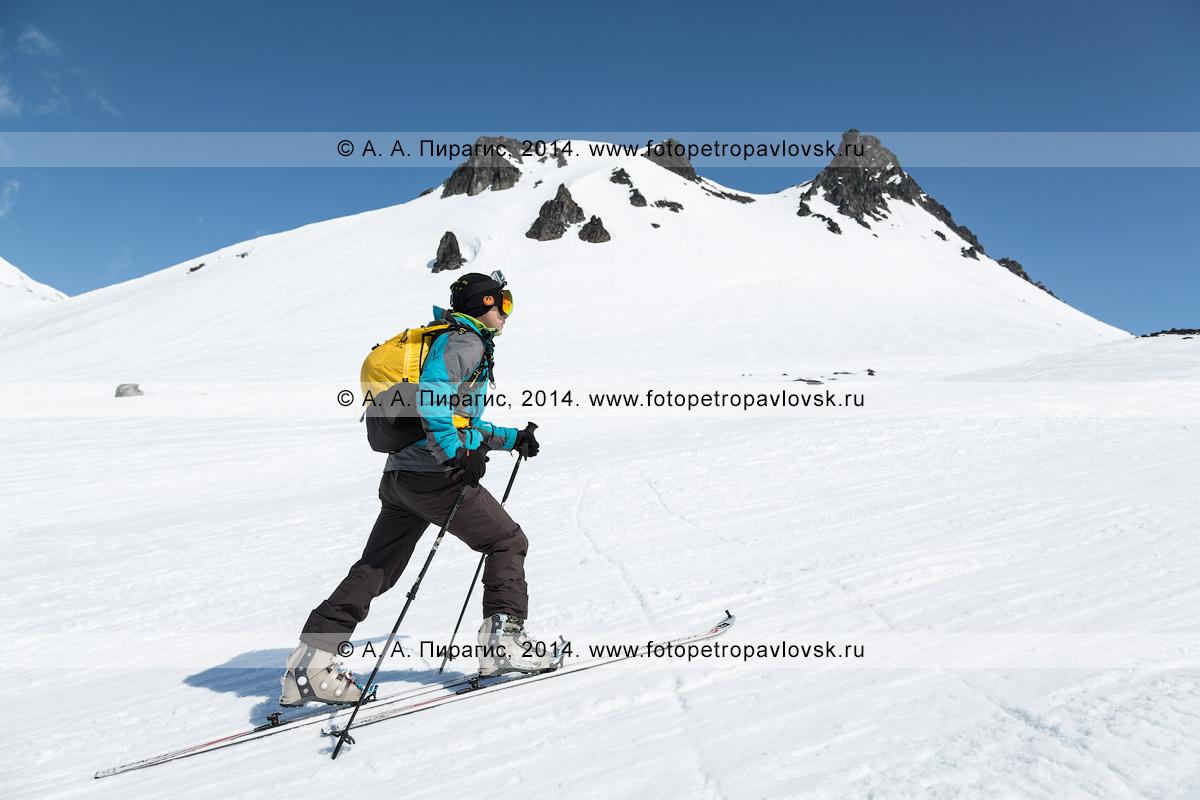 Фотография: ски-альпинист (зритель) идет на лыжах с пристегнутым камусом на фоне горы Верблюд. Соревнования по ски-альпинизму — индивидуальная гонка. Полуостров Камчатка