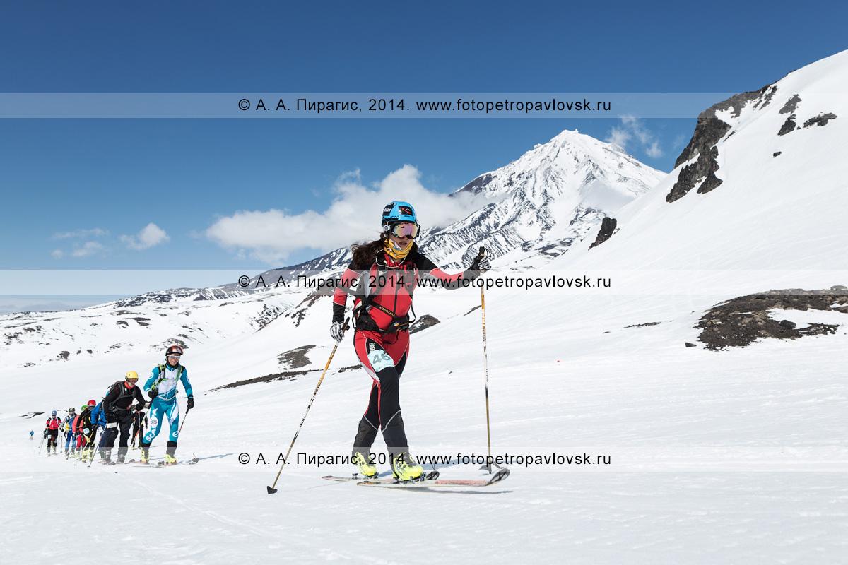 Фотография: спортсмены — участники соревнований по ски-альпинизму (индивидуальная гонка) поднимаются на лыжах с пристегнутым камусом на вулкан Авачинская сопка на фоне вулкана Корякская сопка. Полуостров Камчатка