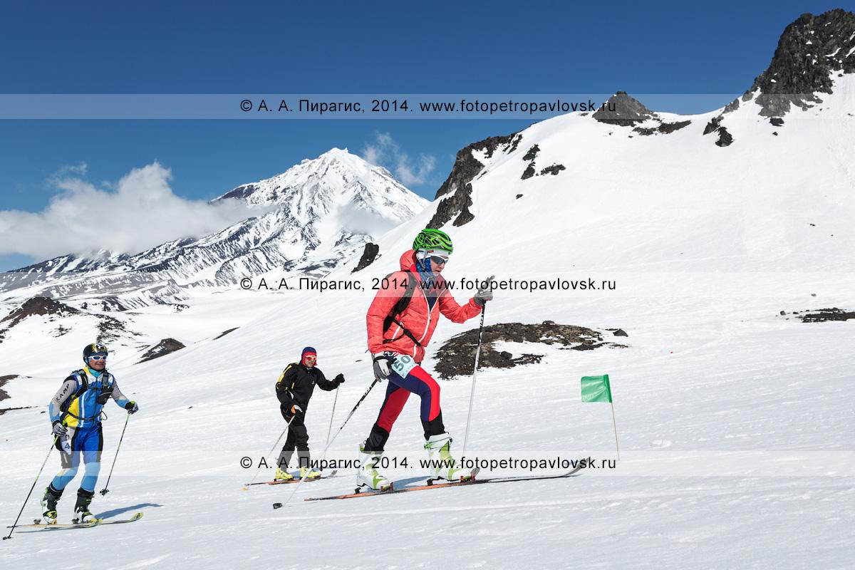 Фотография: ски-альпинисты идут на лыжах с пристегнутым камусом на Авачинский вулкан на фоне Корякского вулкана (полуостров Камчатка). Соревнования по ски-альпинизму — индивидуальная гонка