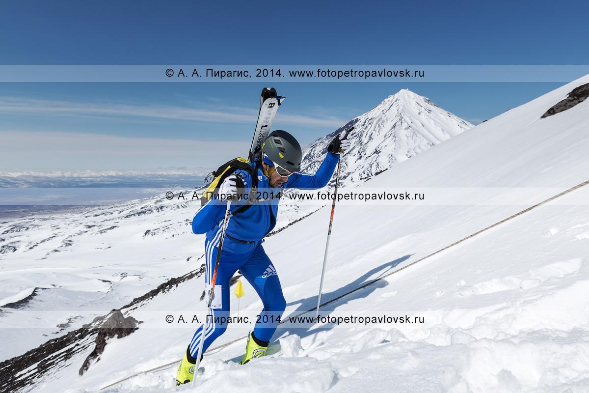Фотография: камчатский ски-альпинист Владимир Амангалиев поднимается пешком (с лыжами, пристегнутыми к рюкзаку) на вулкан Авачинская сопка на фоне вулкана Корякская сопка. Соревнования по ски-альпинизму (индивидуальная гонка). Полуостров Камчатка