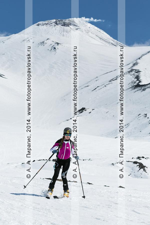 Фотография: камчатская ски-альпинистка Сорвинкова Татьяна едет на лыжах с вулкана Авачинская сопка. Соревнования по ски-альпинизму — индивидуальная гонка. Камчатский край